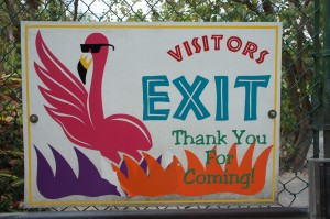 Thanks for visiting Ardastra Gardens in Nassau, Bahamas