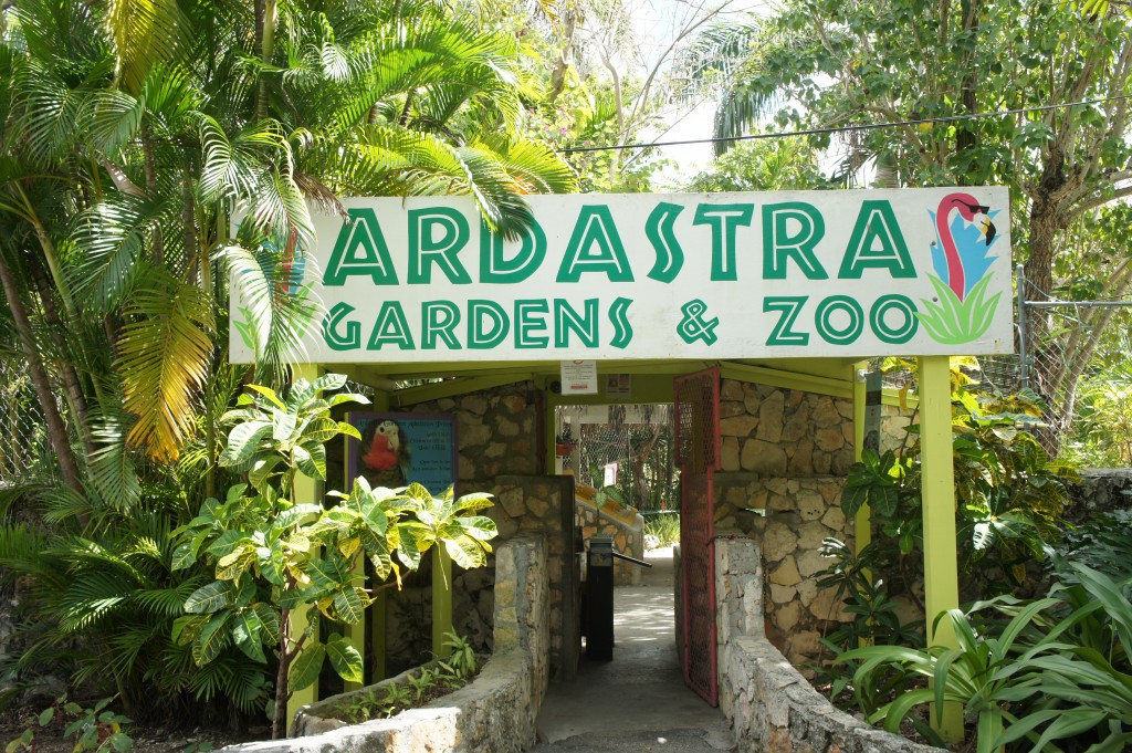 Welcome to Ardastra Gardens & Zoo in Nassau, Bahamas